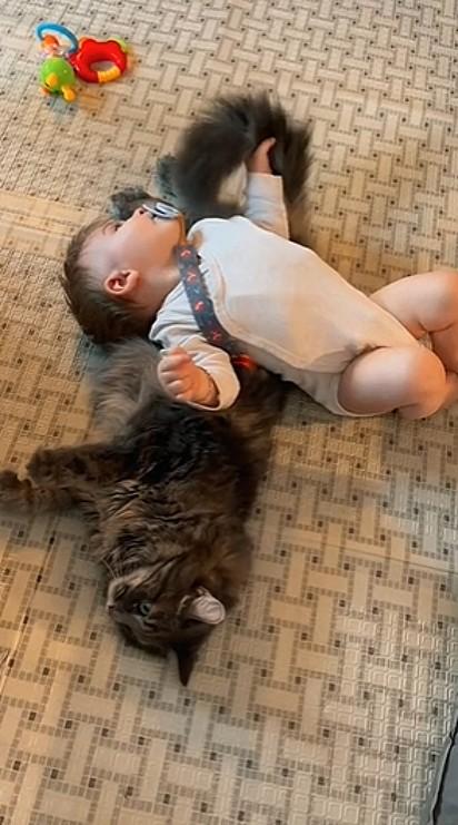Mayson, aconchegado no gatinho.