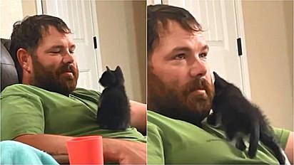 Marido é convencido após mulher adotar gato.