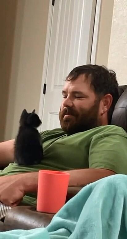 O gatinho adotou o seu humano favorito.