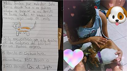 Menina compartilha pedido de ajuda para reencontrar seu cachorro. Ela desenhou um retrato falado do pet.