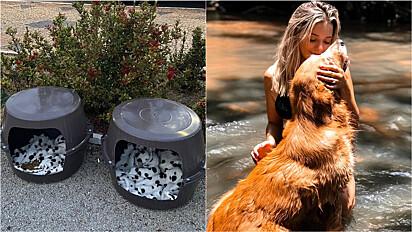 Jovem faz casinhas para animais de ruas com baldes na cidade de Tupã, em São Paulo.