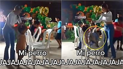 Pug aparece em festa infantil e ganha a partida da brincadeira dança das cadeiras.