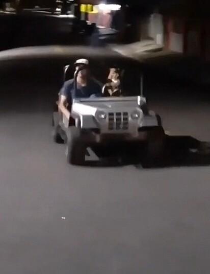 O cachorro leva um rapaz no banco do passageiro.