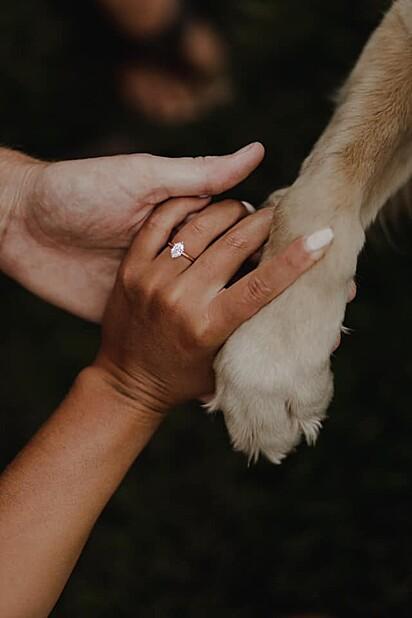 Os registros ficaram ainda mais lindos com a presença da cadelinha.