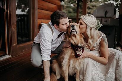"""A nossa estava nas fotos do nosso noivado e o """"melhor cachorro"""" do nosso casamento, comentou a internauta."""