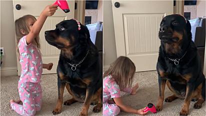 Cachorrinha permite-se ser paparicada por criança durante brincadeira de spa.
