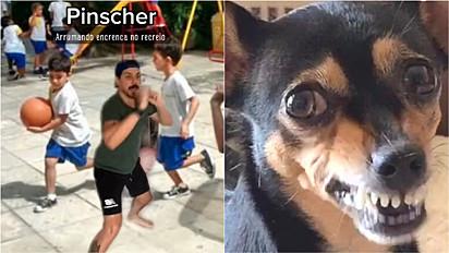 Humorista encena como imagina as raças de cães na escola.