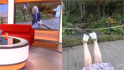 Filhote de cão-guia arrasta apresentadora meteorológica pela guia e a deixa de pernas pro ar em programa ao vivo.