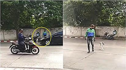 Motoqueiro estaciona moto para ajudar cachorro de rua a atravessar via movimentada.