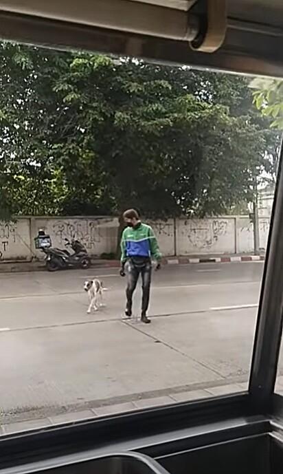 O cãozinho confiou no rapaz e acompanhou o homem na travessia.
