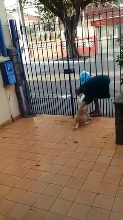Mimi adora receber um carinho do Sr. Sebastião, um morador de rua da região.