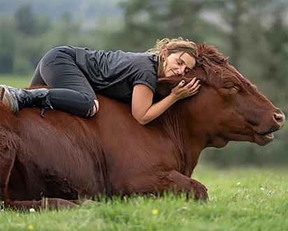 Heidi está deitada em cima das costas do touro