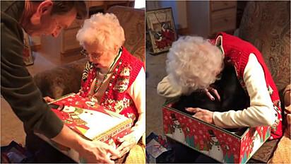 Idosa se emociona ao ganhar de presente de Natal um lindo gato preto.