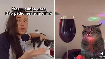 Jovem cria vídeo engraçado como se gato em mesa de bar entregasse uma taça de drink para a sua gata.