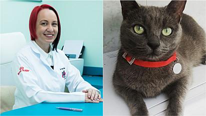 Amédica veterinária especializada em felinos, Vanessa Zimbres, explica sobre a importância da conscientização das pessoas em relação ao câncer de mama em felinos.