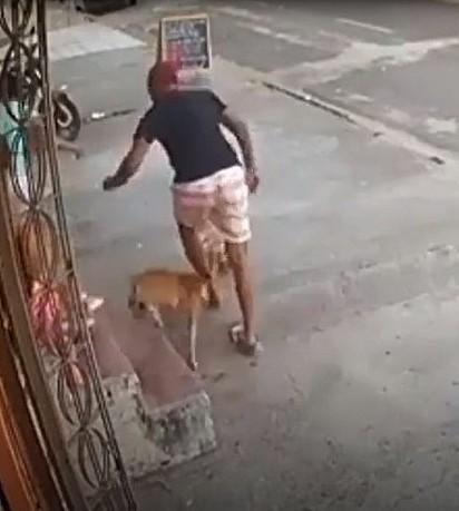 Ladrão é mordido por cachorro