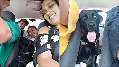 Família relata desafio em mudança e sem deixar para trás seu cachorro tão amado.