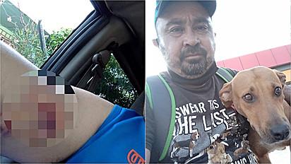 Homem que foi mordido por cachorra de rua paga com amor.