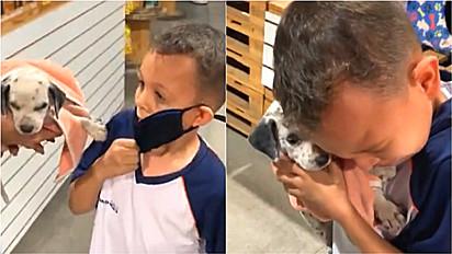 Criança se emociona ao ganhar um filhote de cachorro de presente.