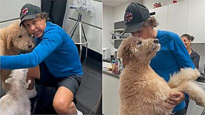 Cães de Tom Cavalcante, correm ao seu encontro ao perceberem que ele havia caído no chão.