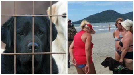 Banhista chama polícia para tirar cão-guia de turista cega na praia de Balneário Camboriú e causa a revolta de todos