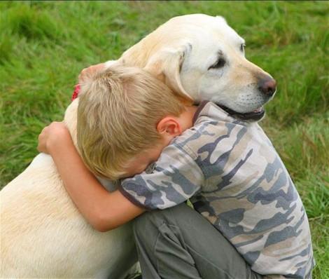 Por que os cães vivem menos que as pessoas? A lição do cachorro