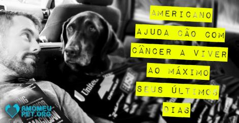 Americano ajuda cão com câncer a viver ao máximo seus últimos dias