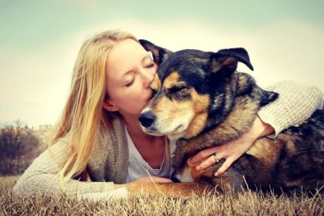 Quando tudo desabar ao teu redor, seu cachorro estará sempre contigo