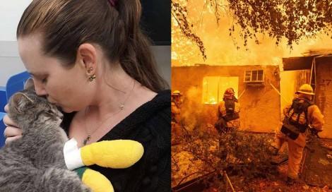 Gato que sobreviveu a incêndio nunca pensou que veria sua mãe novamente (VEJA O VÍDEO)
