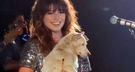 Paula Fernandes pede por mais amor aos animais durante show no RS (VEJA O VÍDEO)
