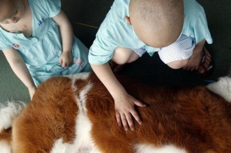 Setor pediátrico de hospital gaúcho recebe visita de animais da S.O.S Peludos
