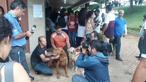 Cães em Brumadinho encontram 4 pessoas vivas