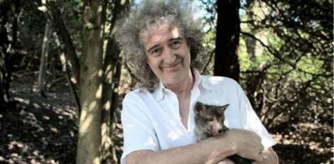 Guitarrista do Queen quer ser lembrado por combater a crueldade contra os animais