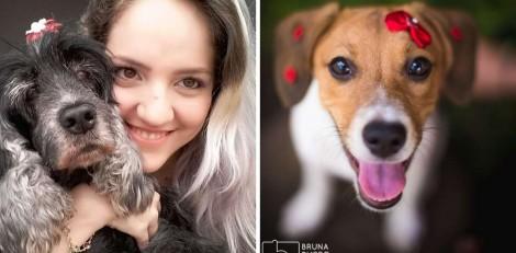 Fotógrafa se especializa em ensaios de animais de estimação após morte de sua pet