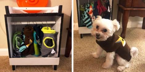 Cachorrinho é tão apaixonado por roupas que sua dona construiu um roupeiro só pra ele