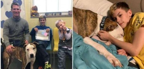 Família adota criança e cachorro exatamente no mesmo dia
