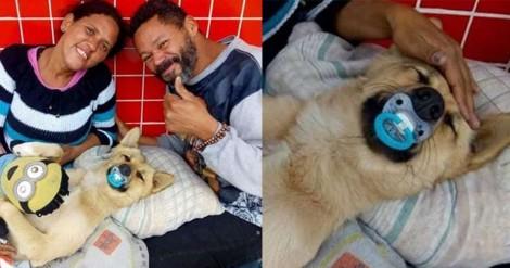 Casal de moradores de rua enche de amor seu cãozinho que adora chupeta