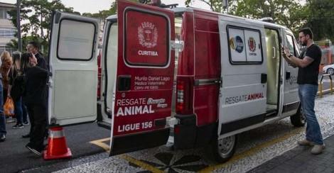Curitiba ganha ambulância exclusiva de resgate de cães e gatos de rua