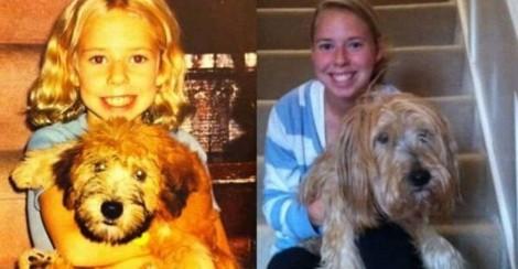 Usuário 'garimpa' fotos de antes e depois de donos e seus pets - confira