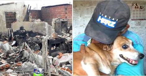 Catador que perdeu casa pelo fogo diz que podia perder tudo, exceto seu amado cãozinho