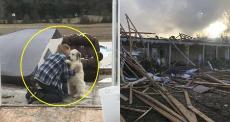 Cadela reencontra tutora após violento tornado tê-las separado: 'Pura emoção'