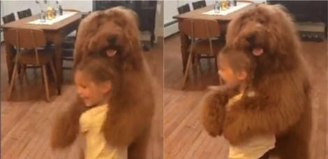 Em quarentena, mãe compartilha vídeo hilário de sua filha dançando com cachorro e viraliza