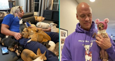 Fisiculturista que tinha preconceito contra cães pequenos é curado de depressão por um e adota dezenas deles
