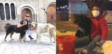 Homem procura por cães de rua todos os dias para alimentá-los durante quarentena