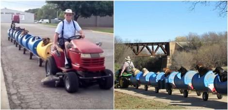 Fazendeiro aposentado cria trem para levar seus 9 cães adotados para passear na cidade