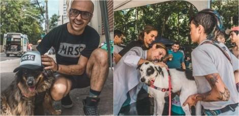 Fotógrafo cria ONG que leva comida e higiene para sem-teto e seus cães de estimação