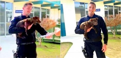 Policial resgata filhote que estava sendo agredido covardemente, prende o dono e adota o cãozinho; confira