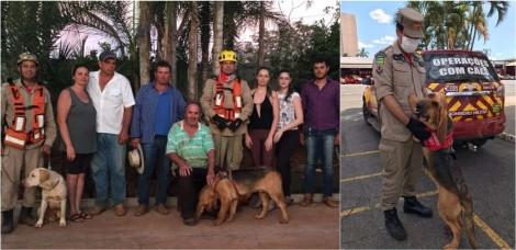 Cão farejador encontra idoso de 70 anos perdido em bananal em Goiás: 'Sem o cão, não o encontraríamos com vida'