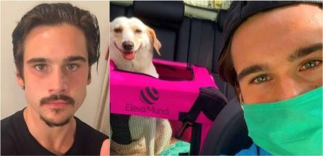 Ator Nicolas Prattes adota cadela que ficou órfã ao perder a dona vítima do covid-19