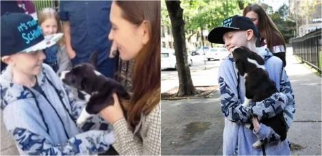 Internado por um ano para tratar um câncer raro, garoto que sempre sonhou em ter um cachorro ganha um filhote no dia da sua alta; vídeo